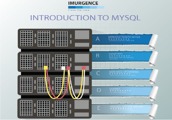Database Programming for Data Analyst using MySQL
