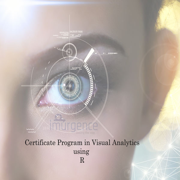 Certificate Program in Visual Analytics Using R